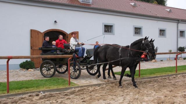 Obnovená koniareň vareáli firmy Poľno SME
